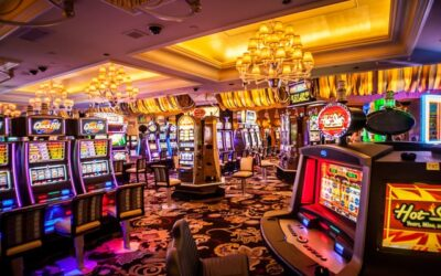 Mogelijkheden voor Friese ondernemers bij het online gokken